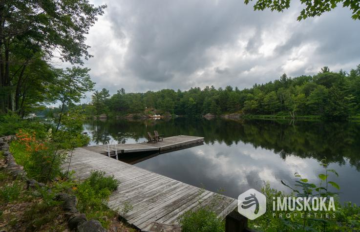 Pine Lake Starter