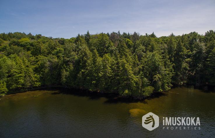 Indian River/Rosseau Side