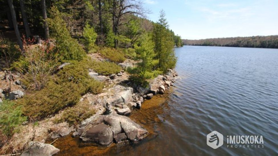 Lots of outstanding shore Canadian shield shoreline